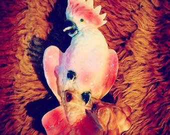 Prissy Pink Parrot