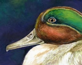 Male Teal Duck- Original Watercolor 5 x 7