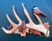 Handmade intarsia shed deer antler with morel mushrooms, chickadee and fall leaves
