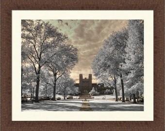 Washington University St. Louis infrared photo