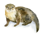 River Otter Watercolor Painting - 7 x 5 - Giclee Reproduction Fine Art Print - Nursery Art - Woodland Animal