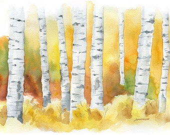Birch Trees Watercolor Painting - 7 x 5 - Autumn Decor - Giclee Print