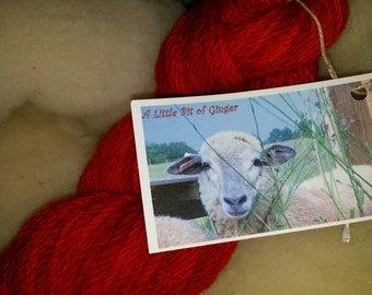Rare Endangered Breed Sheep Wool 100% Organic Florida Gulf Coast Sheep Wool Yarn (Reds)