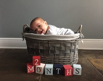 Baby Blocks- Photo Prop for Monthly Baby Pictures- Set of 19 Blocks