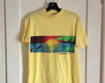 Vintage 1980's Hawaii wind Surf souvenir t-shirt all cotton size Medium colorful scene print