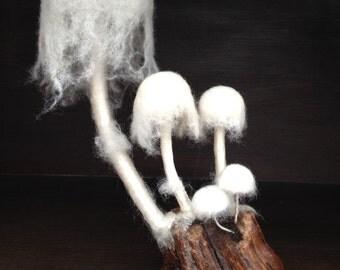 Mixed Media Fungus - Ghost Fungus