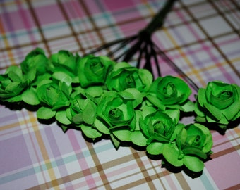 24-Apple Green Paper mini roses