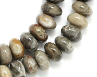 Fossilized Coral Beads - 8mm Rondelle