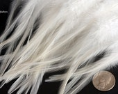 Etsy Feathers on Sale Bulk White Craft Feathers White Rooster Feathers Bulk White Feathers Wholesale Feathers for Sale, 50 PCS