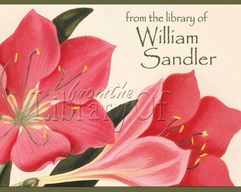 Botanical - Pink Amaryllis - Adhesive Personalized Bookplates - Vintage Art - Lovely Gift