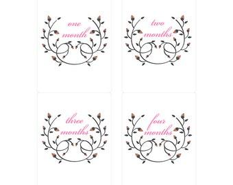 Monthly Baby Onesie Milestone Stickers Custom Floral Wreath Motif Gender Neutral