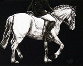 Horse ACEO Giclee Print - Dressage Rider & Pony - English Equestrian Equine Art SFA Safyre Studios