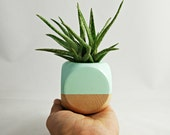 Mini Geometric Planter // Mint + Wood  (Plant Not Included)