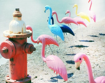 Whimsical Flamingo Photograph, Beach Street, Pastel Pink Flamingos Red Fire Hydrant, Funky Beach Street Print 8x10