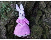 Pink dressed tiny bunny