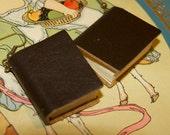 Brown Leather journal notebook book earrings
