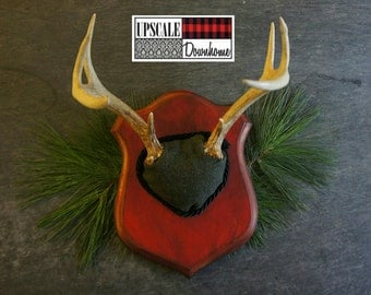 Vintage Deer Antler Mount Red Green Army Wool  Woodland Decor Unique Taxidermy Wall Art