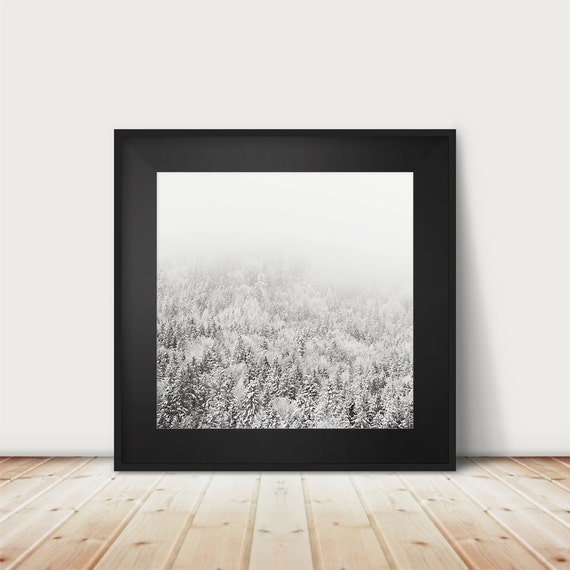 black and white photography winter photograph snow photograph tree photograph woodland photograph mountains photograph