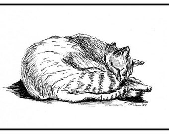 Tabby Cat Pen and Ink Notecards, Cat Greeting Cards, Cat Illustration Notecards, Set of 4 Cards with envelopes. Blank inside.