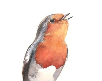 Robin watercolor painting - Print of robin painting - R1015-  5 by 7 print Christmas decor wall art print - bird art print