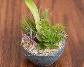 Sixth Scale faux succulent round wood bowl centerpiece in a modern grey stone finish