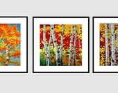 OIL Painting LANDSCAPE Painting Giclee Print Set of  Fine Art Prints on Canvas of ORIGINAL Painting Aspen Fall Painting Trees Painting