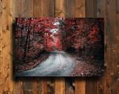 Red Autumn - Autumn photography - Red Autumn photography - Red Leaves photography - Autumn road photography