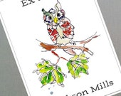 Watercolor Owl Bookplates, personalized, set of 24