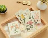 Matchbox Sticker Set - Ver. 1 Flower - 52 Pcs