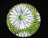"Sydenstricker Green & White Daisy Plate 8.5"" Dish- Signed Fused Art Glass w/ Label"