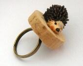 Porcupine ring on coark!