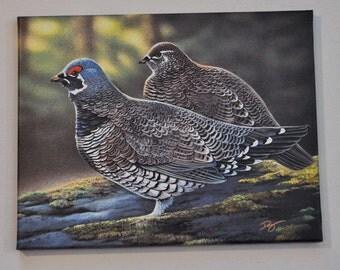 Bird Print Gallery Wrapped Canvas 11 x 14  Spruce Grouse Wildlife Art Print Birds by artist Doug Walpus