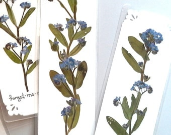 PRESSED FLOWER Bookmarks - Preserved Blue Forget me nots, Keepsake Bookmarks, Natural Garden Flowers, Botanical Art Collage, Friend Gift