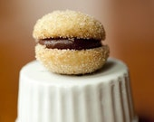 Chocolate Hazelnut Butter Cookie Sandwiches:- vanilla frosting or chocolate hazelnut frosting
