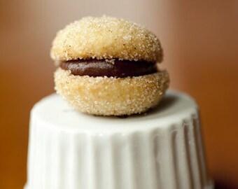 Chocolate Hazelnut Butter Cookie Sandwiches:- vanilla frosting or chocolate hazelnut frosting