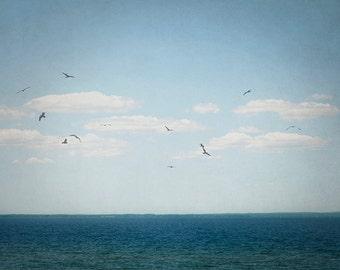 Lake Photography, Nature Picture, Blue Wall Art, Sky Photograph, Bird Artwork, Coastal Home Decor, Cottage Art Print