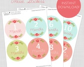 Printable Monthly Onesie Stickers Baby Girl Floral Milestone Vintage Instant Download