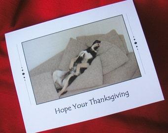 THANKSGIVING CARD - Lazy Dog