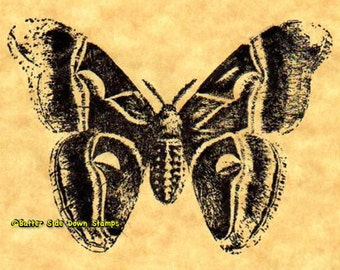 Cynthia Moth Rubber Stamp