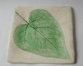 Handmade Ceramic Green and Ivory Leaf Platter