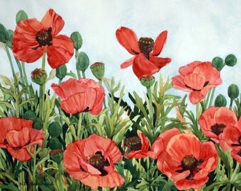 Red Poppy Field with a light blue background