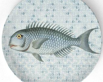 Sea Life Fish I melamine plate