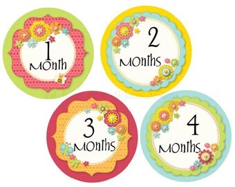 Monthly Baby Stickers Month Stickers Girls Baby Milestone Stickers Baby Monthly Stickers Baby Shower Gift