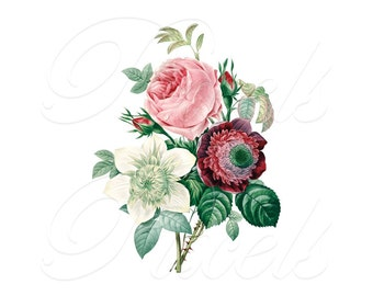 ROSES ANEMONE bouquet Instant Download, Wedding Images, Large Digital Image, pink clipart digital Redoute 131