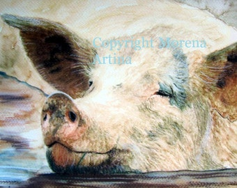 Pig in Muck Giclee Print of  Watercolour and Ink Painting on Watercolour Paper