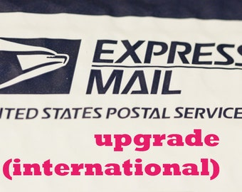 USPS Express Mail -Shipping upgrade listing for INTERNATIONAL customers and Rush Shipping upgrade