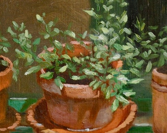 Oregano, 7 x 7, print of an original oil painting