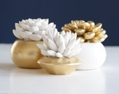 Gold Set of 3 Succulents in Round Containers, Tabletop, Desktop, Modern, Home and Office Decor