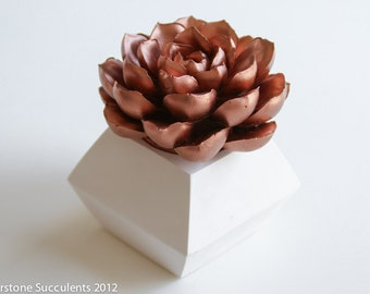 Succulent Sculpture with Interchangeable Geometric Container, Tabletop Centerpiece, Desktop Accessory, Modern Minimalist Home Decor
