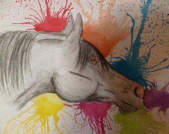 Arabian Horse in the Rainbow aquarel coal